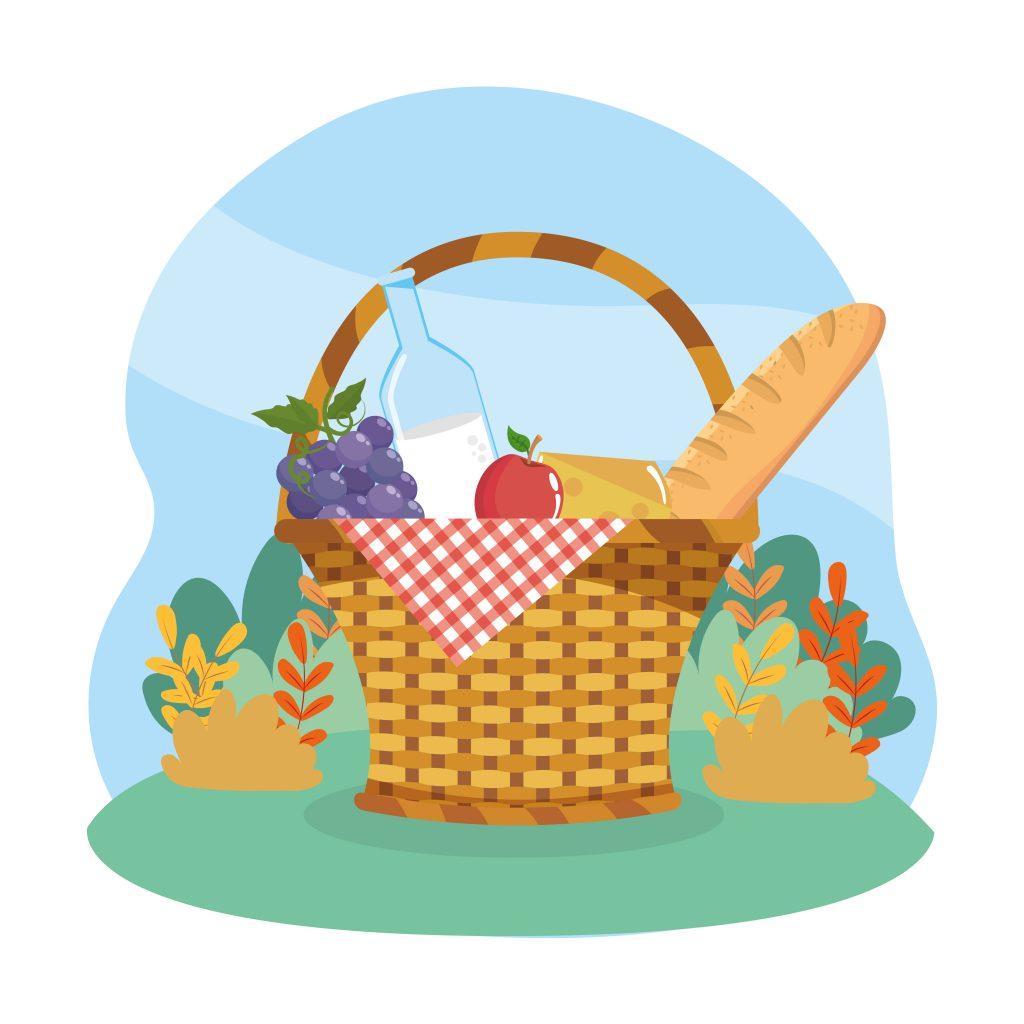 Ein schönes Picknick